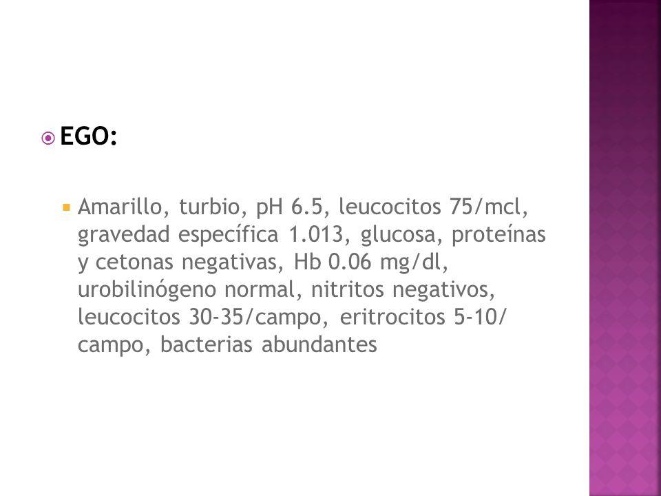 EGO: Amarillo, turbio, pH 6.5, leucocitos 75/mcl, gravedad específica 1.013, glucosa, proteínas y cetonas negativas, Hb 0.06 mg/dl, urobilinógeno norm