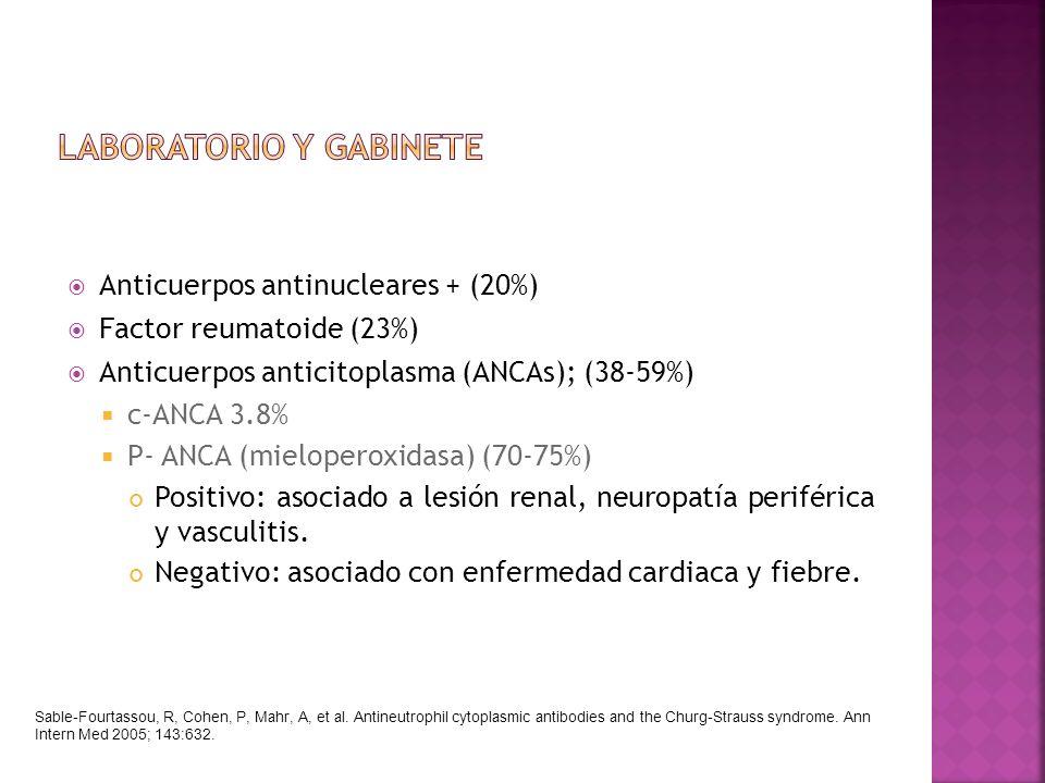 Anticuerpos antinucleares + (20%) Factor reumatoide (23%) Anticuerpos anticitoplasma (ANCAs); (38-59%) c-ANCA 3.8% P- ANCA (mieloperoxidasa) (70-75%)