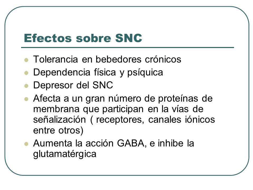 Efectos sobre SNC Tolerancia en bebedores crónicos Dependencia física y psíquica Depresor del SNC Afecta a un gran número de proteínas de membrana que