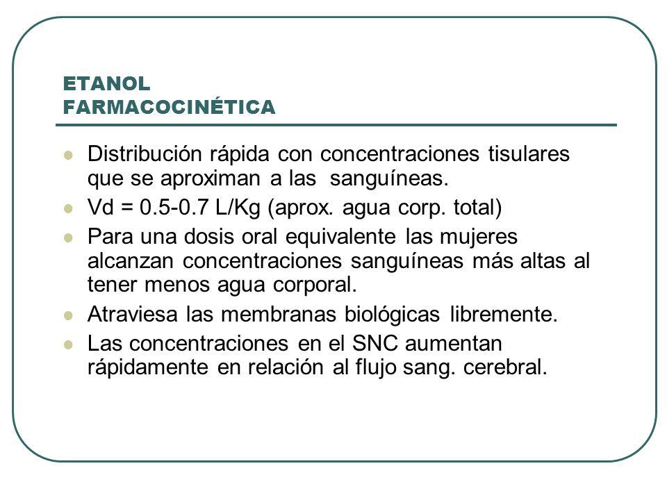ETANOL FARMACOCINÉTICA Distribución rápida con concentraciones tisulares que se aproximan a las sanguíneas. Vd = 0.5-0.7 L/Kg (aprox. agua corp. total