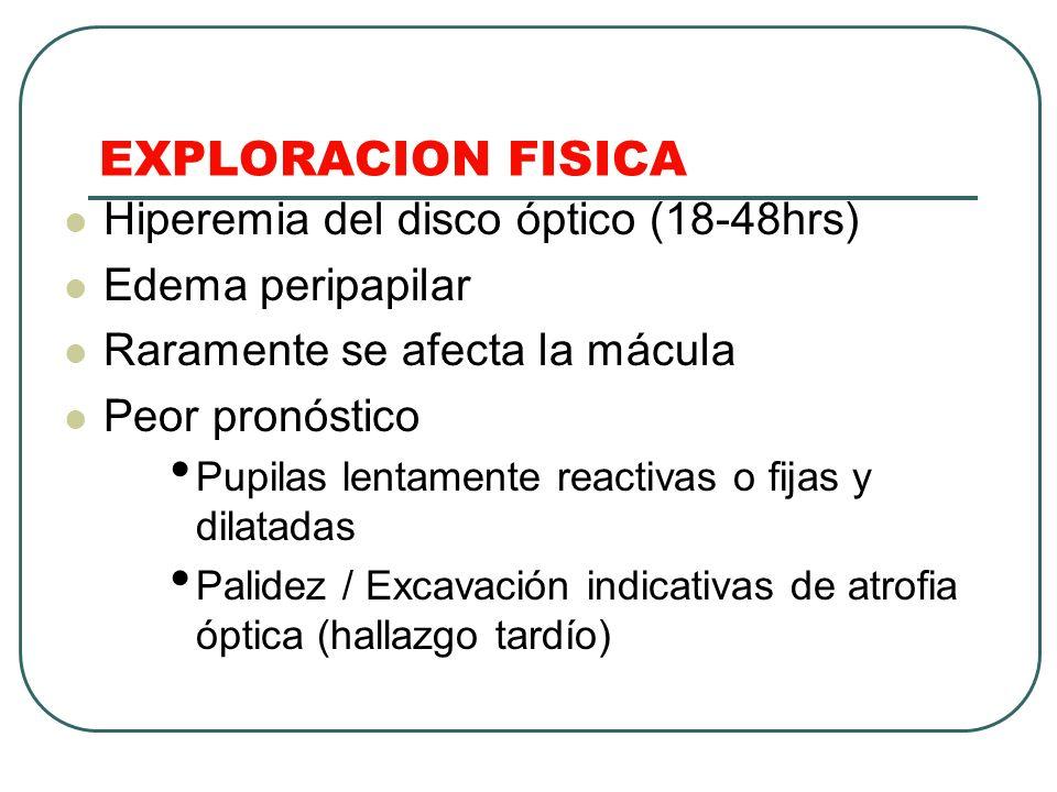 EXPLORACION FISICA Hiperemia del disco óptico (18-48hrs) Edema peripapilar Raramente se afecta la mácula Peor pronóstico Pupilas lentamente reactivas