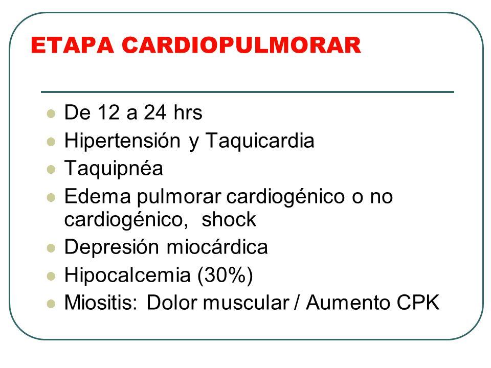ETAPA CARDIOPULMORAR De 12 a 24 hrs Hipertensión y Taquicardia Taquipnéa Edema pulmorar cardiogénico o no cardiogénico, shock Depresión miocárdica Hip