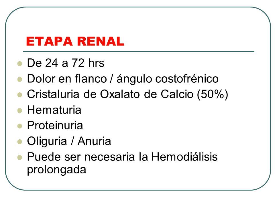 ETAPA RENAL De 24 a 72 hrs Dolor en flanco / ángulo costofrénico Cristaluria de Oxalato de Calcio (50%) Hematuria Proteinuria Oliguria / Anuria Puede