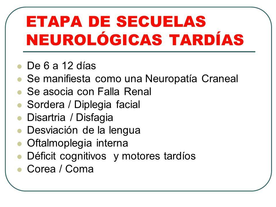 ETAPA DE SECUELAS NEUROLÓGICAS TARDÍAS De 6 a 12 días Se manifiesta como una Neuropatía Craneal Se asocia con Falla Renal Sordera / Diplegia facial Di