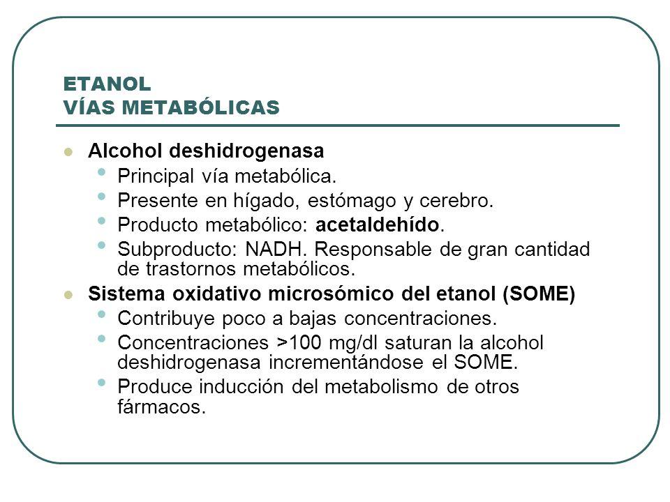 ETANOL VÍAS METABÓLICAS Alcohol deshidrogenasa Principal vía metabólica. Presente en hígado, estómago y cerebro. Producto metabólico: acetaldehído. Su