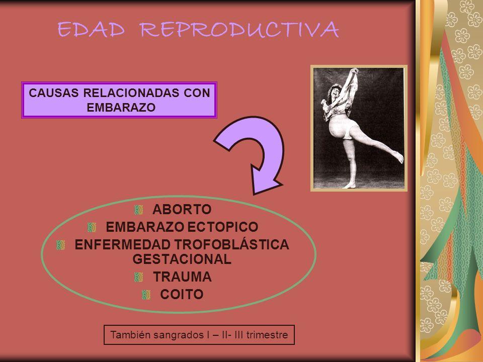 ABORTO EMBARAZO ECTOPICO ENFERMEDAD TROFOBLÁSTICA GESTACIONAL TRAUMA COITO CAUSAS RELACIONADAS CON EMBARAZO También sangrados I – II- III trimestre ED