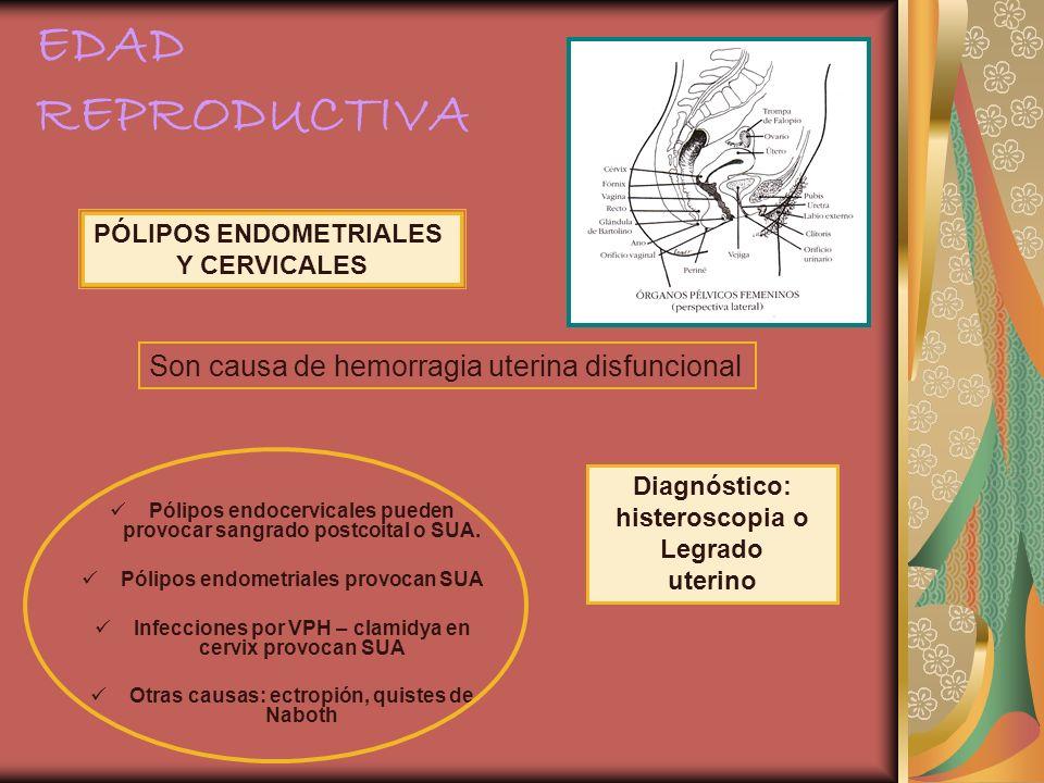 Pólipos endocervicales pueden provocar sangrado postcoital o SUA. Pólipos endometriales provocan SUA Infecciones por VPH – clamidya en cervix provocan