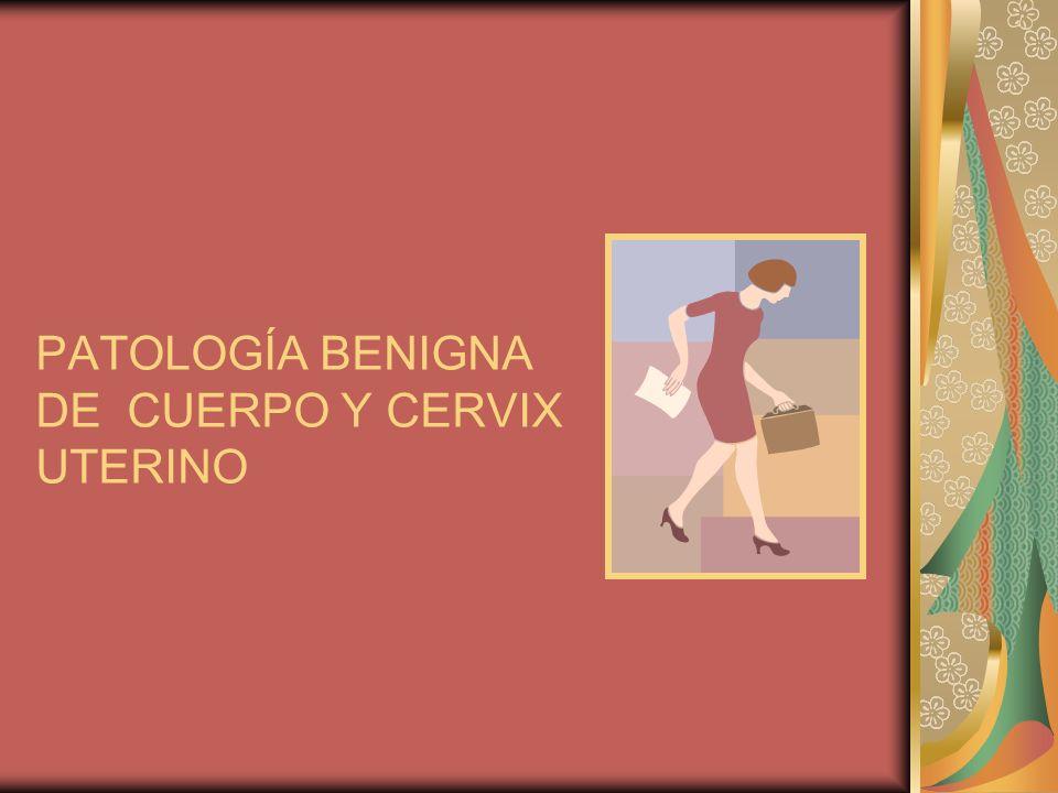 MANEJO DE PACIENTES CON PATOLOGÍA BENIGNA DE ÚTERO DIAGNÓSTICO HISTORIA CLÍNICA DATOS GENERALES ANTECEDENTES PERSONALES PATOLÓGICOS HISTORIA MENSTRUAL, OBSTÉTRICA RECORDAR Edad, oficioRenal, hepática, hemática Cantidad, duración, olor, relaciones sexuales, síntomas asociados