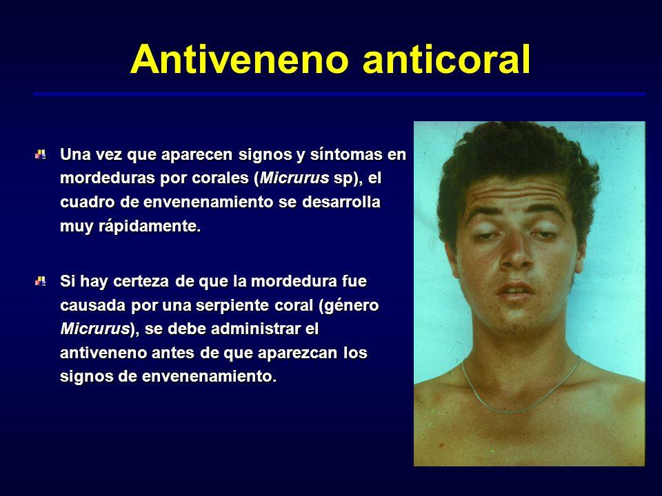 Antiveneno anticoral Una vez que aparecen signos y síntomas en mordeduras por corales (Micrurus sp), el cuadro de envenenamiento se desarrolla muy ráp