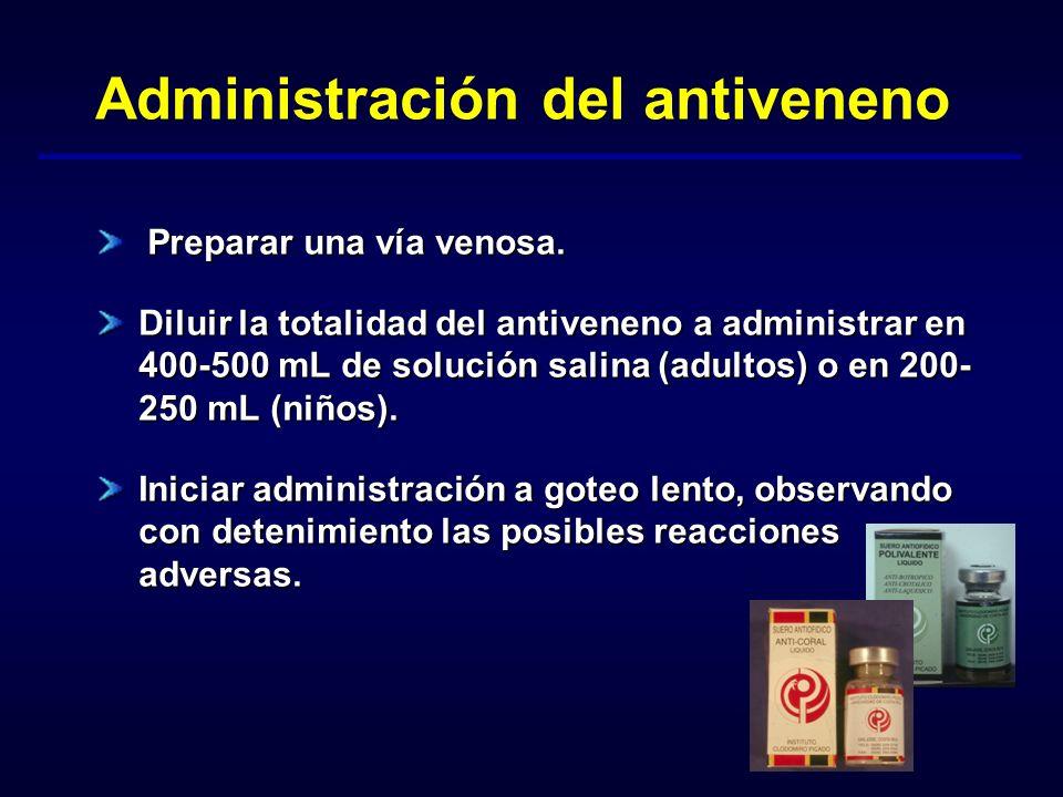 Administración del antiveneno Preparar una vía venosa. Diluir la totalidad del antiveneno a administrar en 400-500 mL de solución salina (adultos) o e
