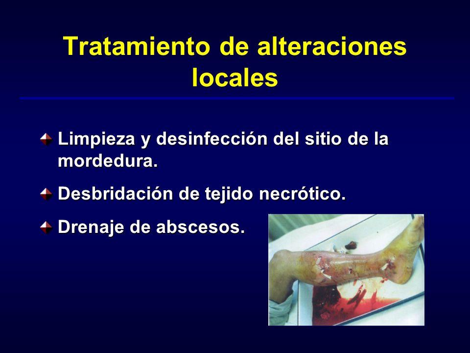 Tratamiento de alteraciones locales Limpieza y desinfección del sitio de la mordedura. Desbridación de tejido necrótico. Drenaje de abscesos.