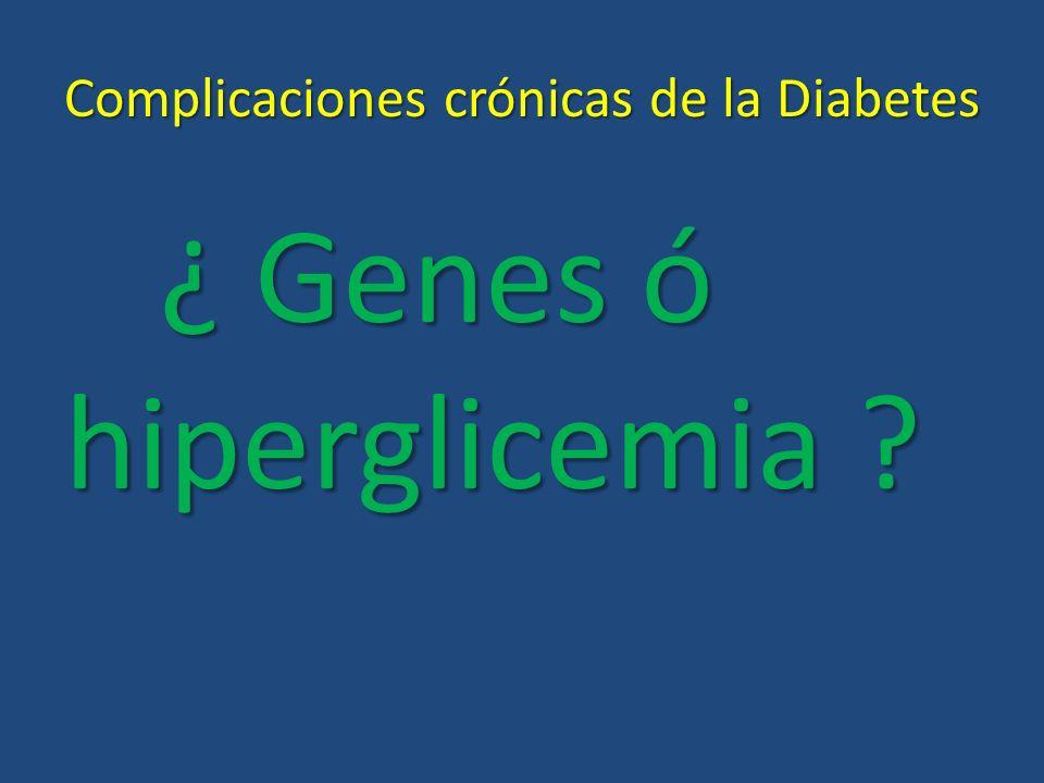 Complicaciones crónicas de la Diabetes ¿ Genes ó hiperglicemia ?