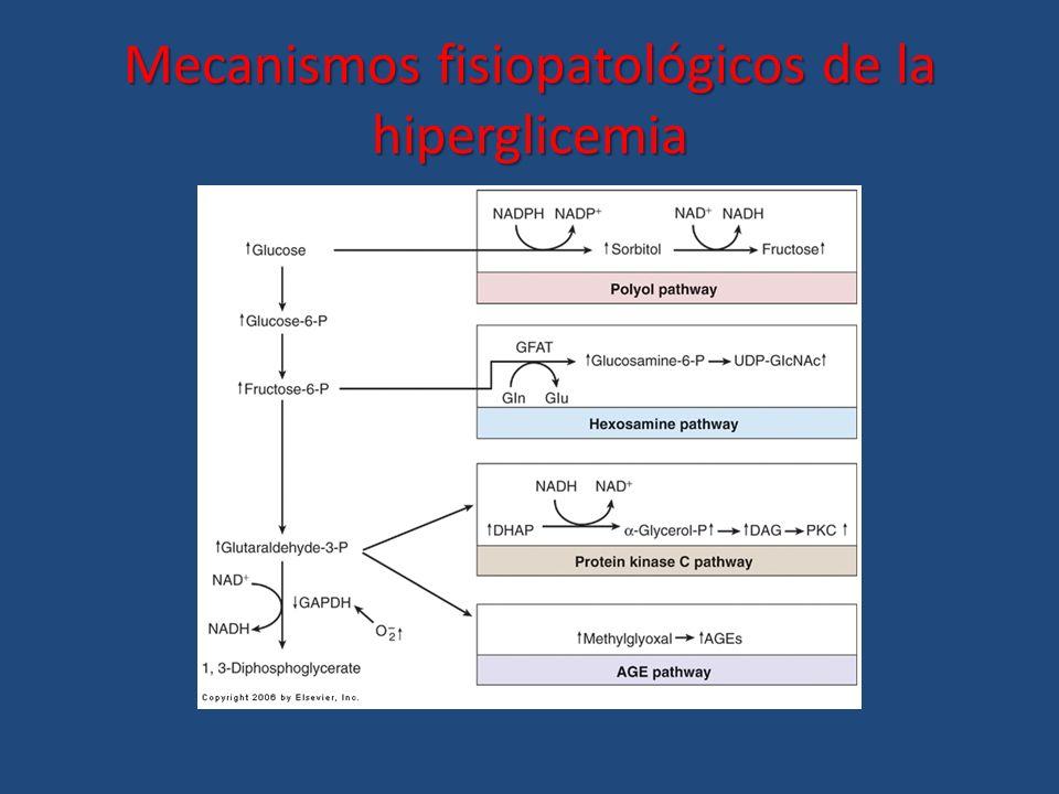 Mecanismos fisiopatológicos de la hiperglicemia