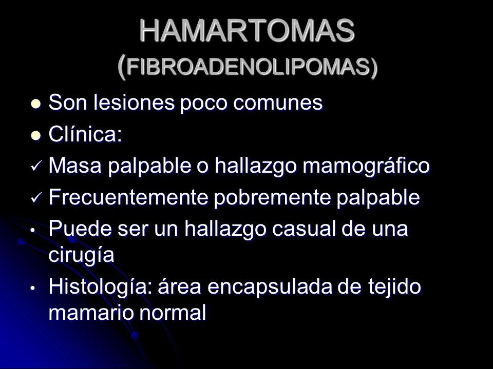 HAMARTOMAS ( FIBROADENOLIPOMAS) Son lesiones poco comunes Son lesiones poco comunes Clínica: Clínica: Masa palpable o hallazgo mamográfico Masa palpable o hallazgo mamográfico Frecuentemente pobremente palpable Frecuentemente pobremente palpable Puede ser un hallazgo casual de una cirugía Puede ser un hallazgo casual de una cirugía Histología: área encapsulada de tejido mamario normal Histología: área encapsulada de tejido mamario normal