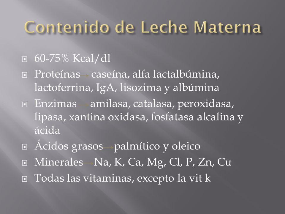 60-75% Kcal/dl Proteínas caseína, alfa lactalbúmina, lactoferrina, IgA, lisozima y albúmina Enzimas amilasa, catalasa, peroxidasa, lipasa, xantina oxi