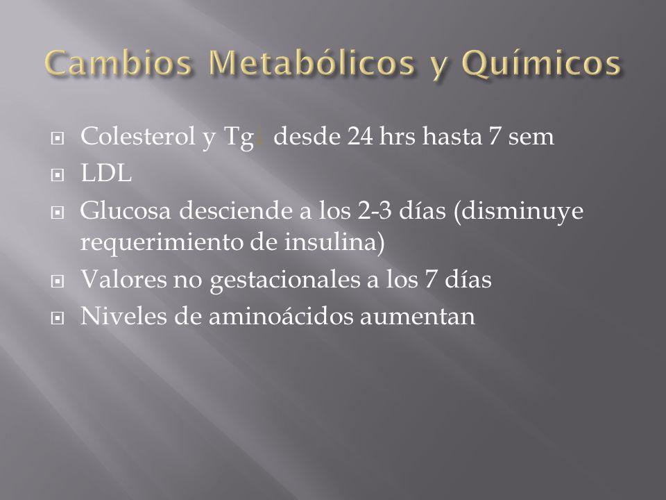 Colesterol y Tg desde 24 hrs hasta 7 sem LDL Glucosa desciende a los 2-3 días (disminuye requerimiento de insulina) Valores no gestacionales a los 7 d