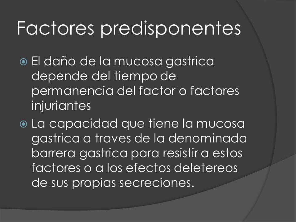 Factores predisponentes El daño de la mucosa gastrica depende del tiempo de permanencia del factor o factores injuriantes La capacidad que tiene la mucosa gastrica a traves de la denominada barrera gastrica para resistir a estos factores o a los efectos deletereos de sus propias secreciones.