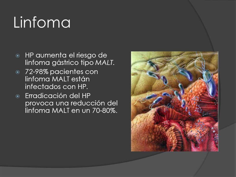 Linfoma HP aumenta el riesgo de linfoma gástrico tipo MALT. 72-98% pacientes con linfoma MALT están infectados con HP. Erradicación del HP provoca una