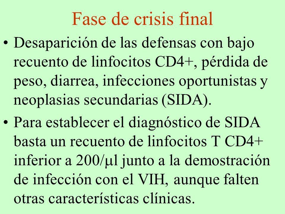 Fase de crisis final Desaparición de las defensas con bajo recuento de linfocitos CD4+, pérdida de peso, diarrea, infecciones oportunistas y neoplasia