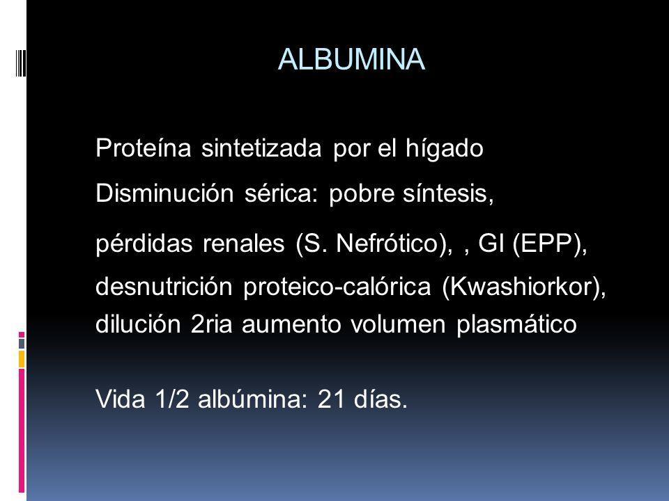 ALBUMINA Proteína sintetizada por el hígado Disminución sérica: pobre síntesis, pérdidas renales (S. Nefrótico),, GI (EPP), desnutrición proteico-caló