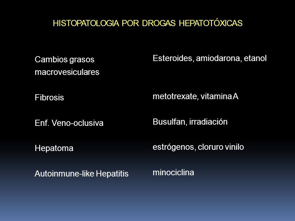 HISTOPATOLOGIA POR DROGAS HEPATOTÓXICAS Cambios grasos macrovesiculares Fibrosis Enf. Veno-oclusiva Hepatoma Autoinmune-like Hepatitis Esteroides, ami