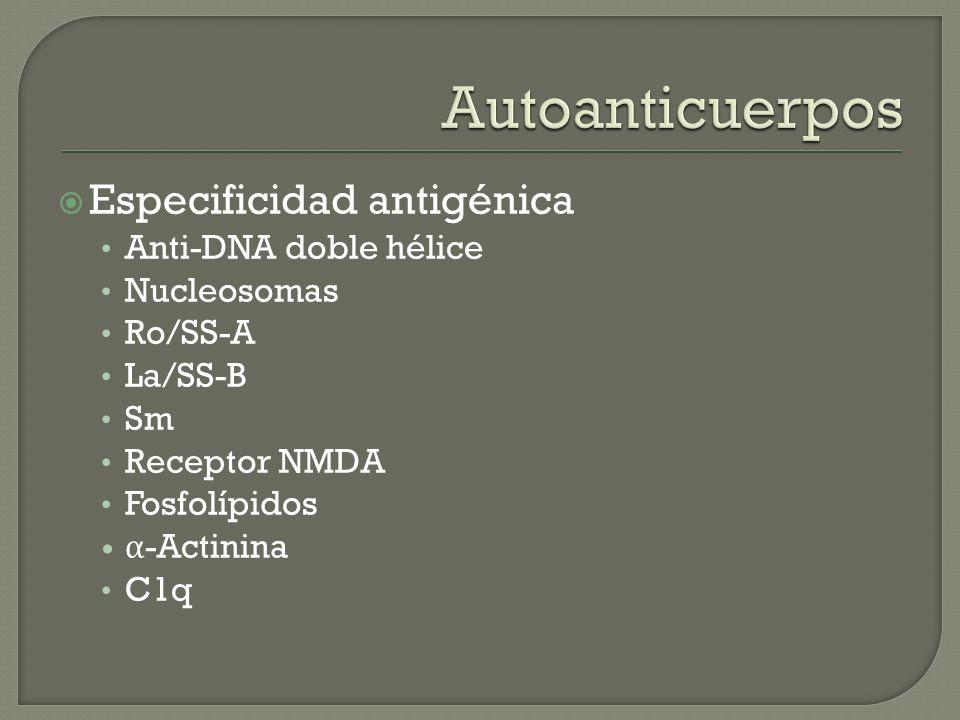 Especificidad antigénica Anti-DNA doble hélice Nucleosomas Ro/SS-A La/SS-B Sm Receptor NMDA Fosfolípidos α -Actinina C1q