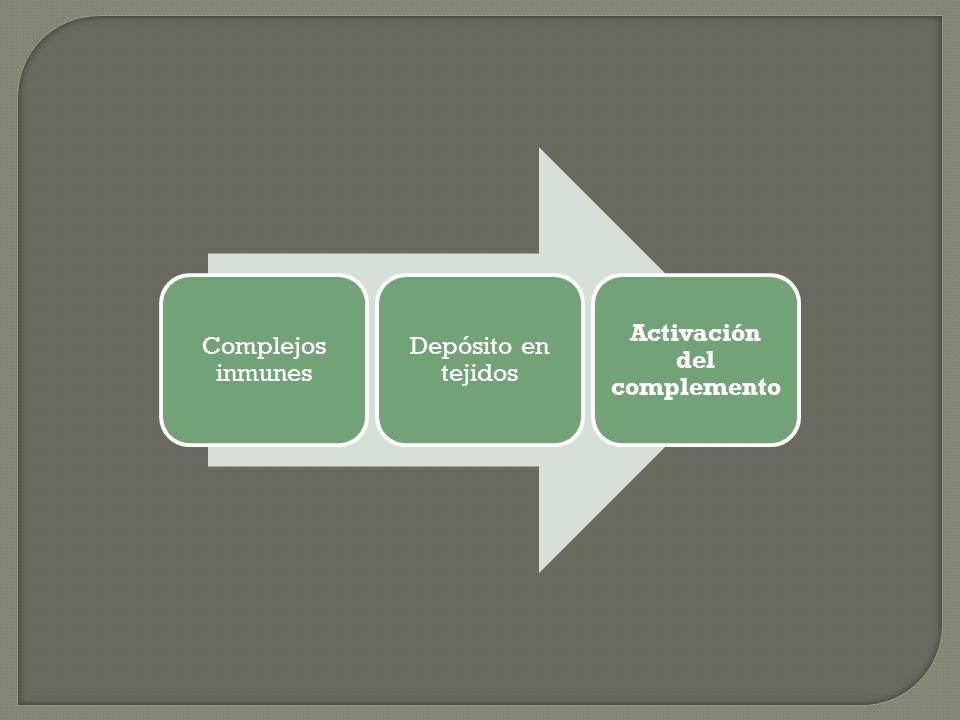Complejos inmunes Depósito en tejidos Activación del complemento