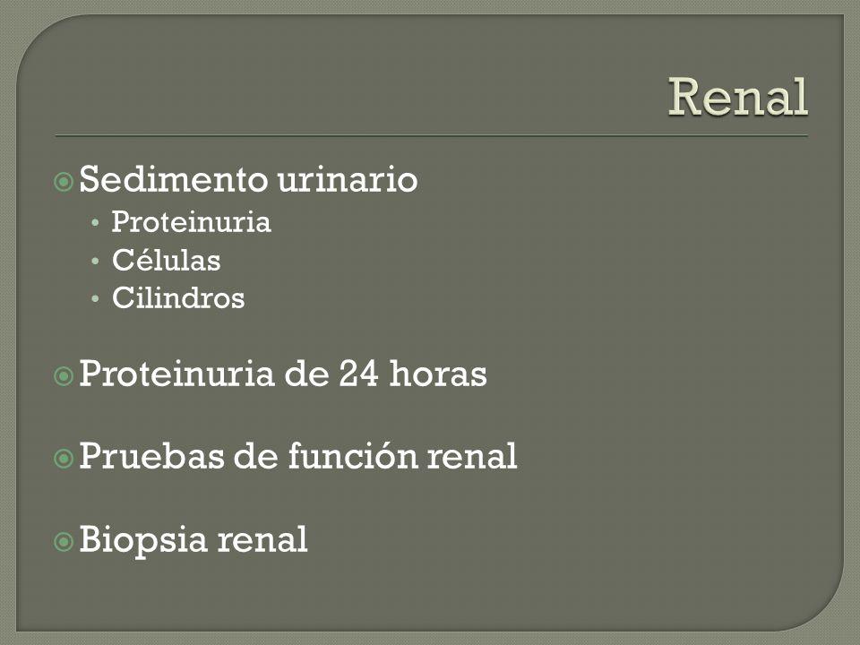 Sedimento urinario Proteinuria Células Cilindros Proteinuria de 24 horas Pruebas de función renal Biopsia renal