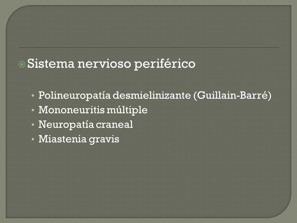 Sistema nervioso periférico Polineuropatía desmielinizante (Guillain-Barré) Mononeuritis múltiple Neuropatía craneal Miastenia gravis