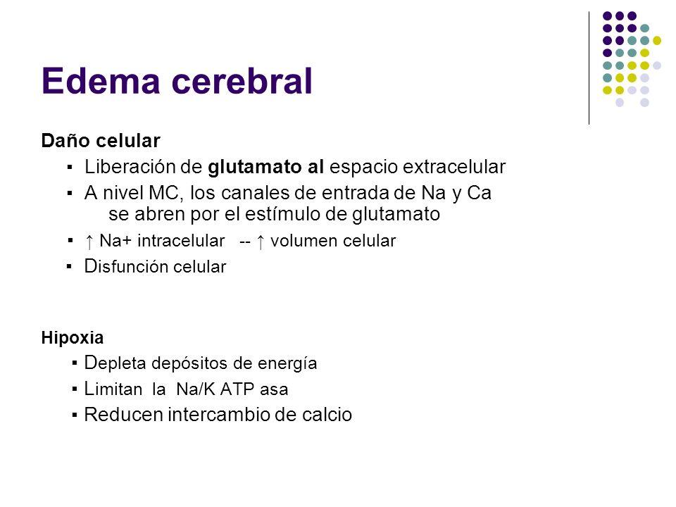 Edema cerebral Daño celular Liberación de glutamato al espacio extracelular A nivel MC, los canales de entrada de Na y Ca se abren por el estímulo de