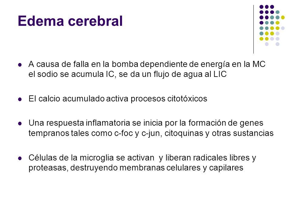 Edema cerebral A causa de falla en la bomba dependiente de energía en la MC el sodio se acumula IC, se da un flujo de agua al LIC El calcio acumulado
