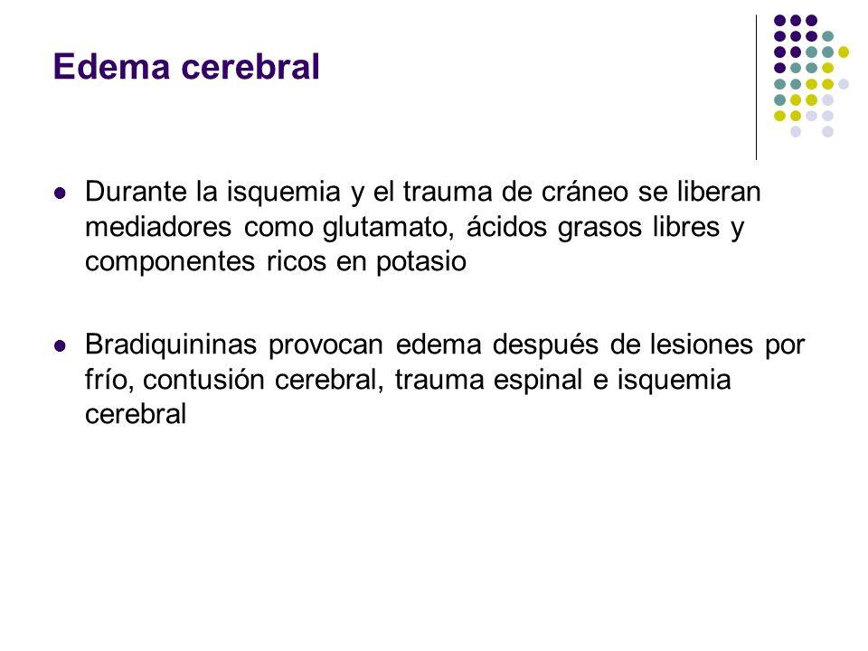 Edema cerebral Durante la isquemia y el trauma de cráneo se liberan mediadores como glutamato, ácidos grasos libres y componentes ricos en potasio Bra