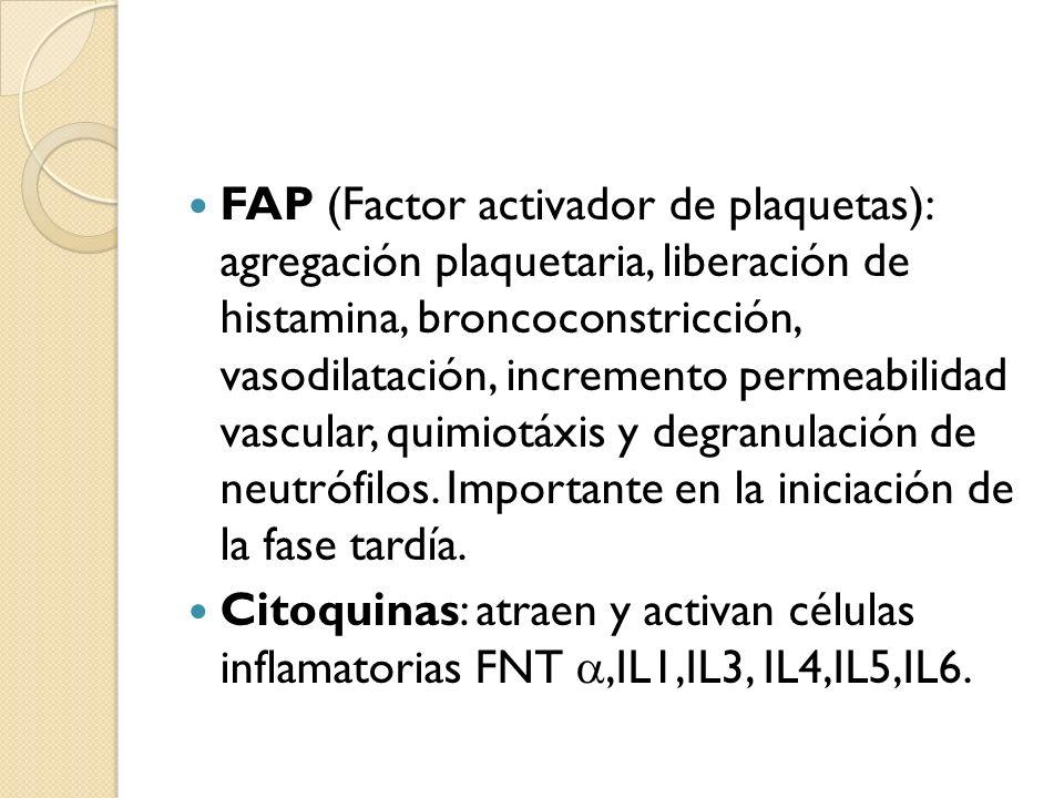 FAP (Factor activador de plaquetas): agregación plaquetaria, liberación de histamina, broncoconstricción, vasodilatación, incremento permeabilidad vas