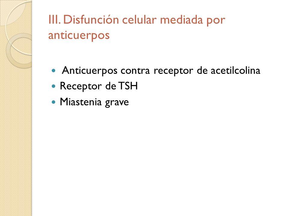 III. Disfunción celular mediada por anticuerpos Anticuerpos contra receptor de acetilcolina Receptor de TSH Miastenia grave