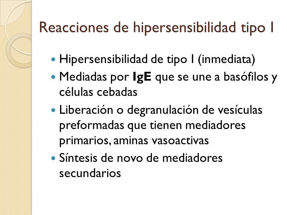 Reacciones de hipersensibilidad tipo I Hipersensibilidad de tipo I (inmediata) Mediadas por IgE que se une a basófilos y células cebadas Liberación o