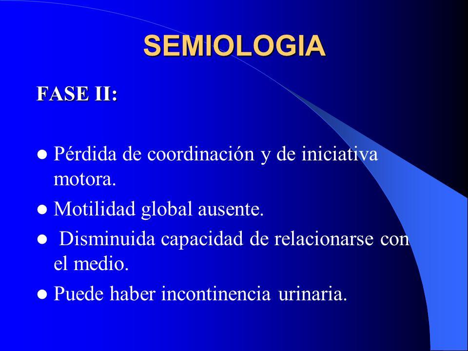 SEMIOLOGIA FASE II: Pérdida de coordinación y de iniciativa motora. Motilidad global ausente. Disminuida capacidad de relacionarse con el medio. Puede