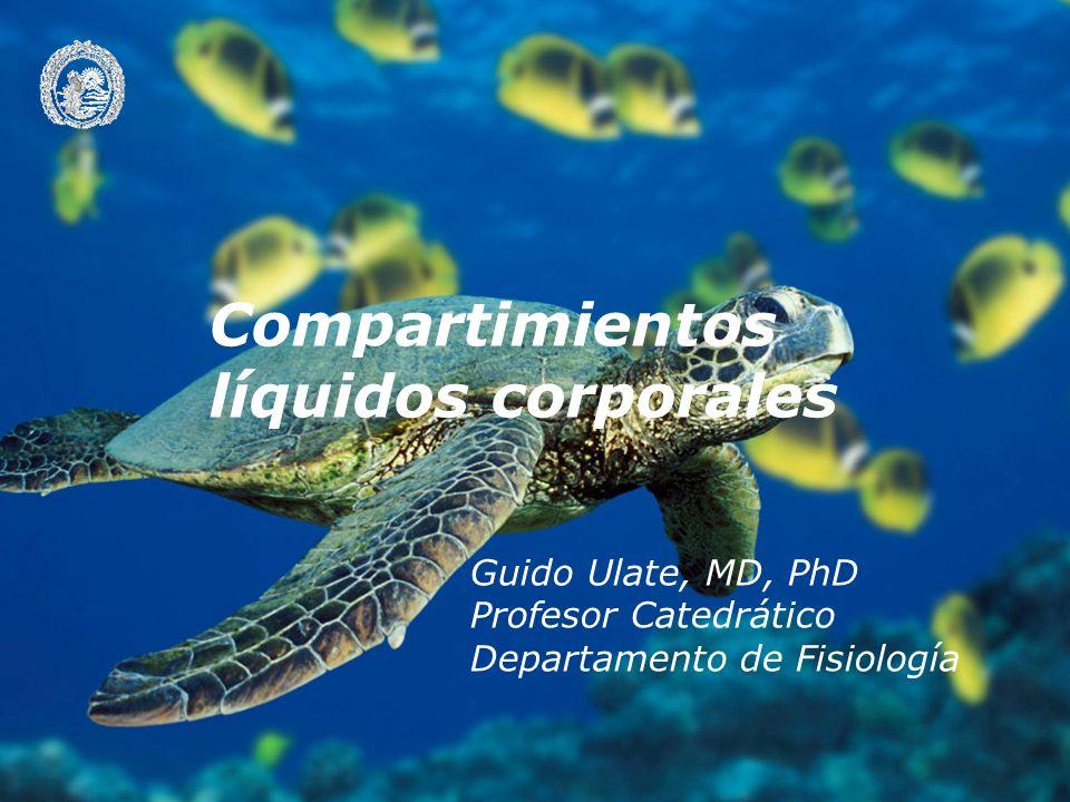 Guido Ulate, MD, PhD Profesor Catedrático Departamento de Fisiología Compartimientos líquidos corporales