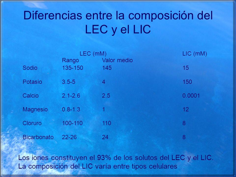 Diferencias entre la composición del LEC y el LIC Rango LEC (mM) Valor medio LIC (mM) Sodio135-15014515 Potasio3.5-54150 Calcio2.1-2.62.50.0001 Magnes