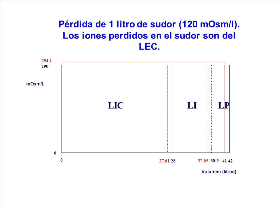 Pérdida de 1 litro de sudor (120 mOsm/l). Los iones perdidos en el sudor son del LEC. 0 294.1 290 mOsm/L Volumen (litros) 27.61 28 37.65 38.5 41 42 0