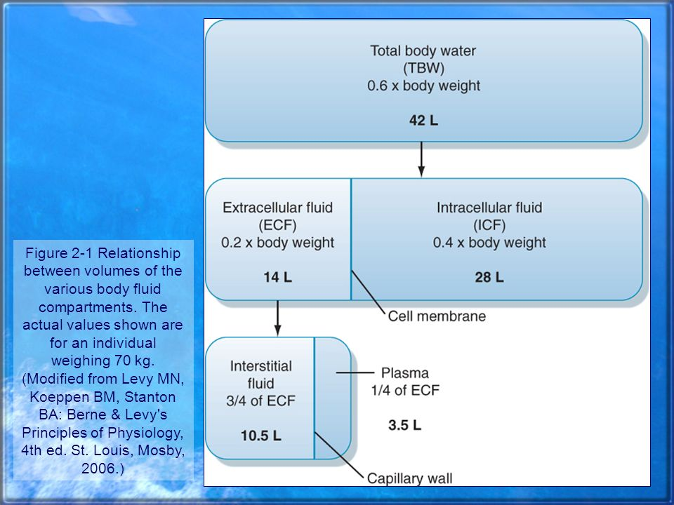 Volumen y osmolalidad de los diferentes compartimientos líquidos corporales (1) (1) Hombre, sano, masculino, 20 años de edad, peso de 70 kg.
