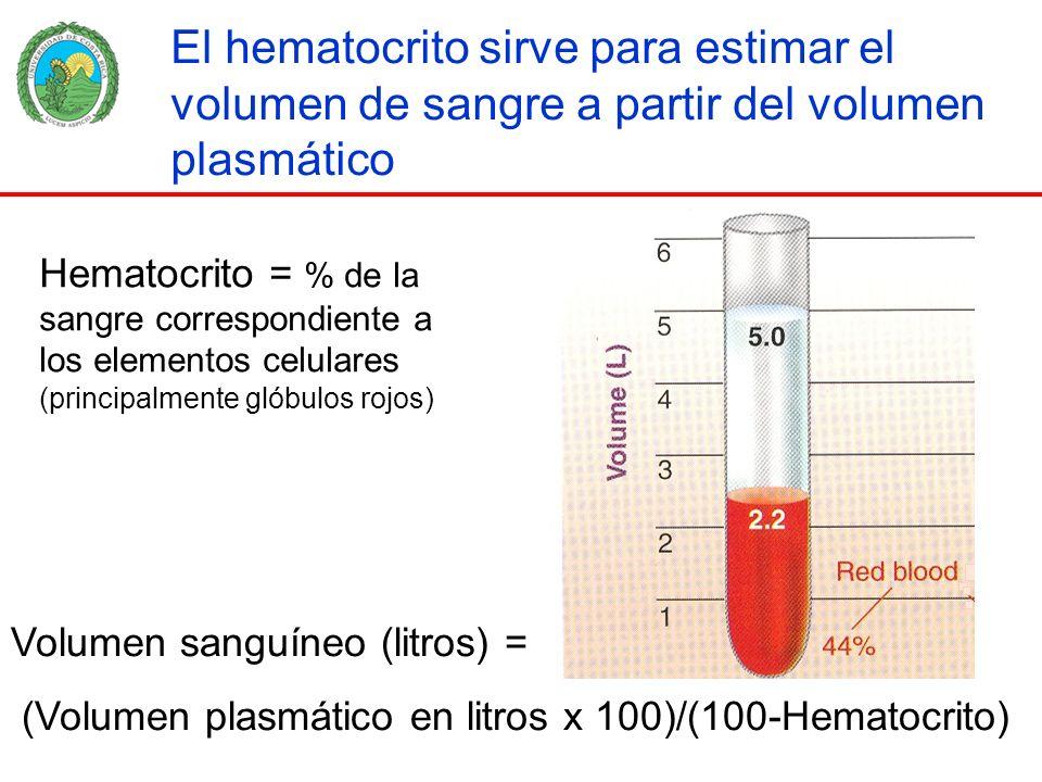 El hematocrito sirve para estimar el volumen de sangre a partir del volumen plasmático Volumen sanguíneo (litros) = (Volumen plasmático en litros x 10