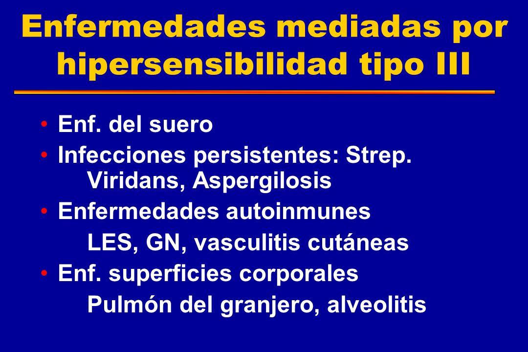 Enfermedades mediadas por hipersensibilidad tipo III Enf. del suero Infecciones persistentes: Strep. Viridans, Aspergilosis Enfermedades autoinmunes L