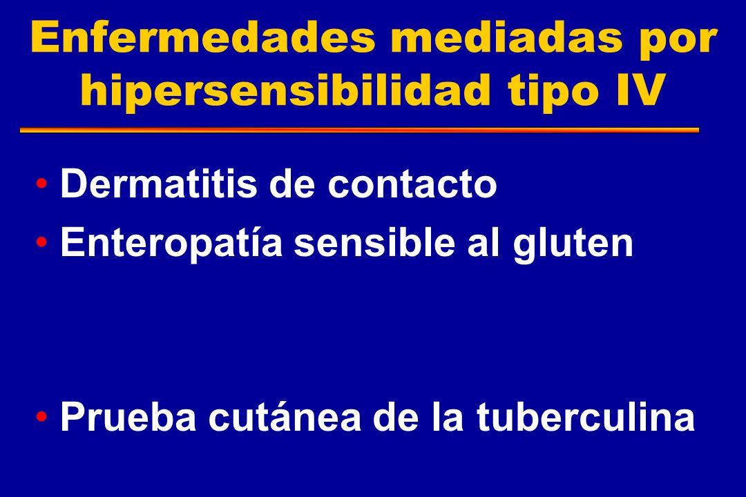 Enfermedades mediadas por hipersensibilidad tipo IV Dermatitis de contacto Enteropatía sensible al gluten Prueba cutánea de la tuberculina
