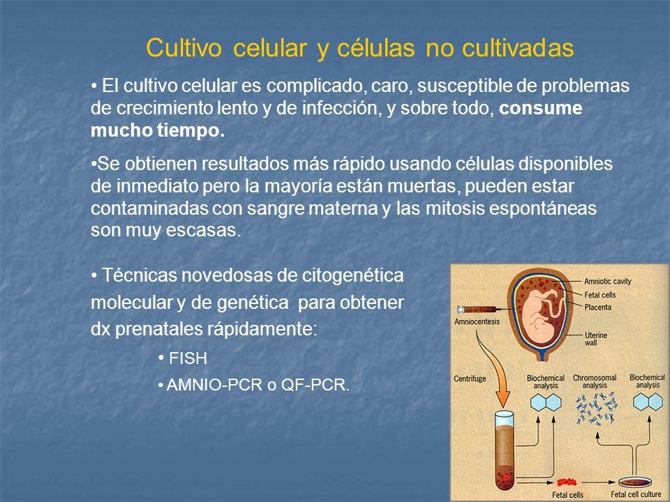 Cultivo celular y células no cultivadas El cultivo celular es complicado, caro, susceptible de problemas de crecimiento lento y de infección, y sobre