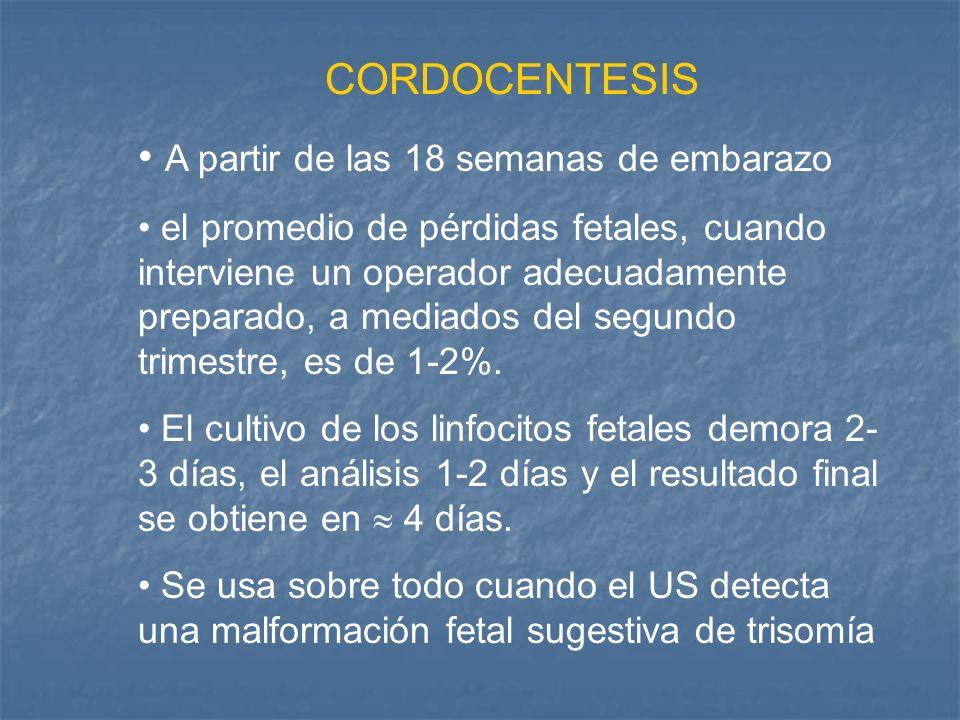 CORDOCENTESIS A partir de las 18 semanas de embarazo el promedio de pérdidas fetales, cuando interviene un operador adecuadamente preparado, a mediado