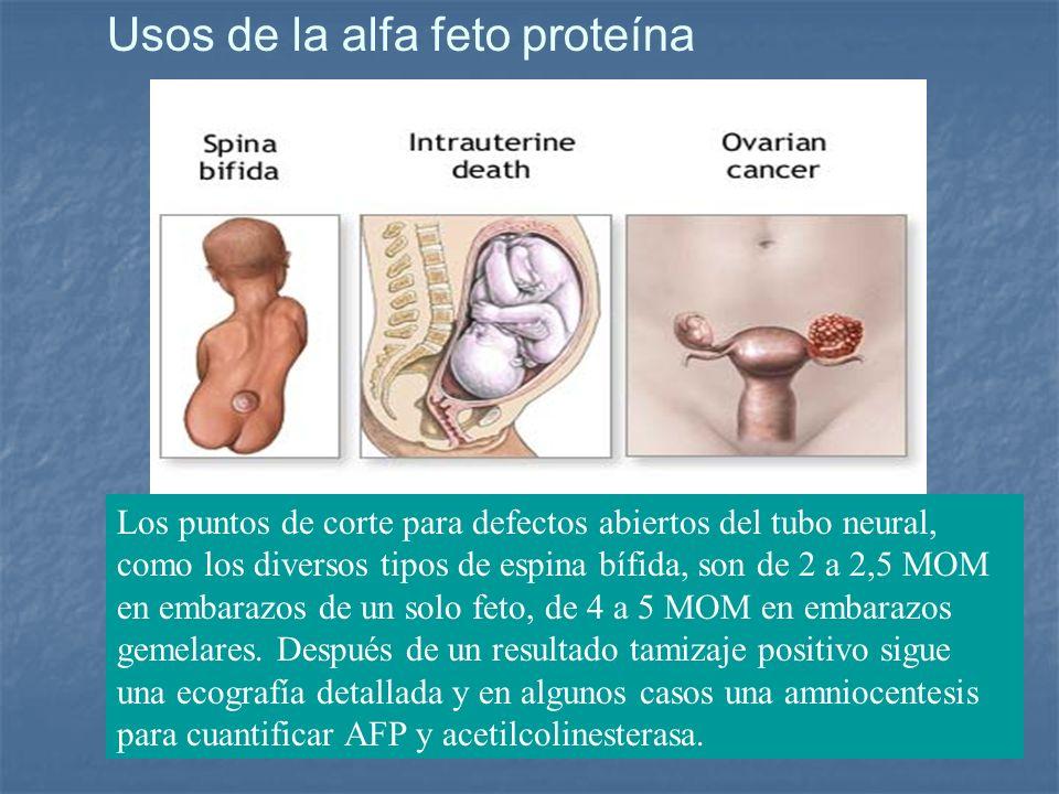Usos de la alfa feto proteína Los puntos de corte para defectos abiertos del tubo neural, como los diversos tipos de espina bífida, son de 2 a 2,5 MOM