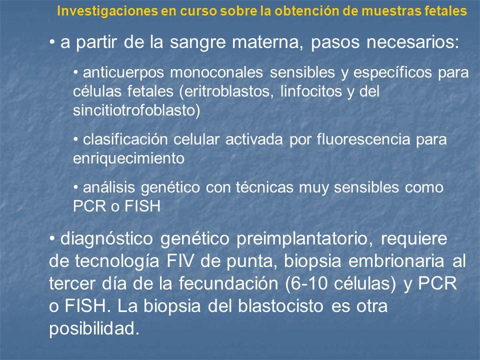 Investigaciones en curso sobre la obtención de muestras fetales a partir de la sangre materna, pasos necesarios: anticuerpos monoconales sensibles y e
