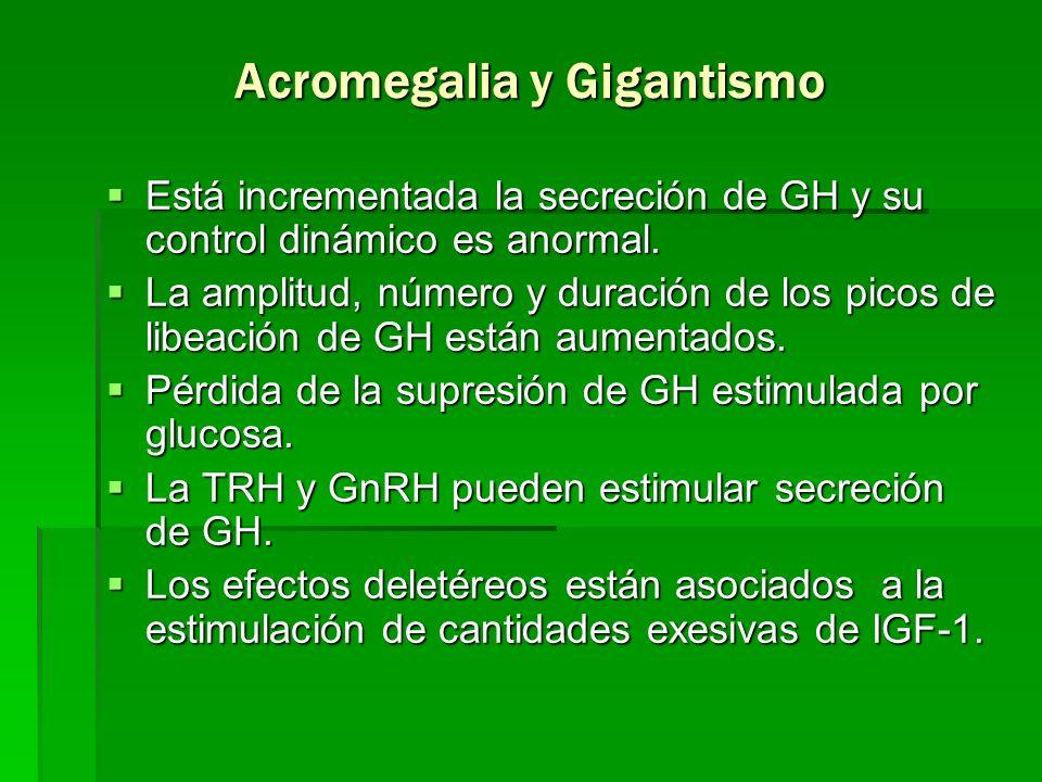 Acromegalia y Gigantismo Está incrementada la secreción de GH y su control dinámico es anormal. Está incrementada la secreción de GH y su control diná