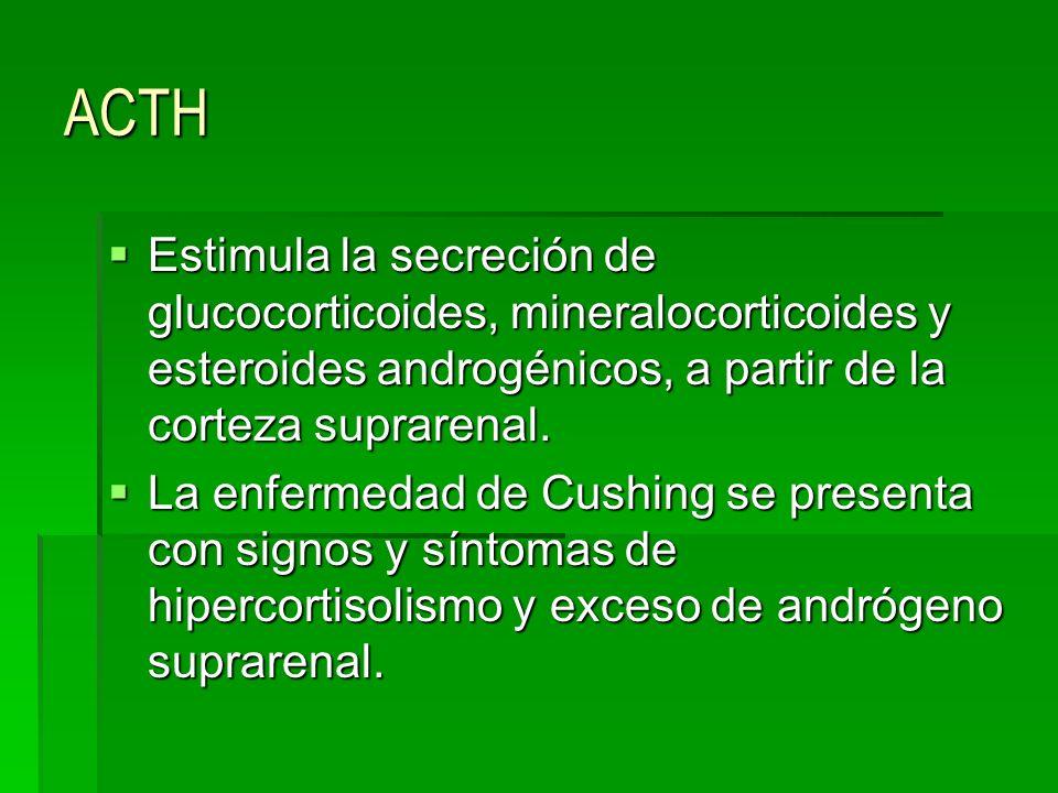 ACTH Estimula la secreción de glucocorticoides, mineralocorticoides y esteroides androgénicos, a partir de la corteza suprarenal. Estimula la secreció
