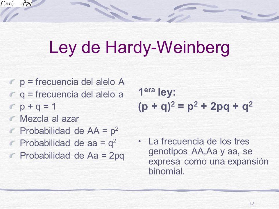 Ley de Hardy-Weinberg p = frecuencia del alelo A q = frecuencia del alelo a p + q = 1 Mezcla al azar Probabilidad de AA = p 2 Probabilidad de aa = q 2